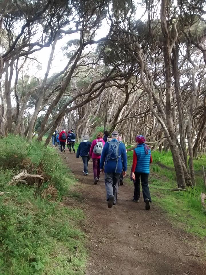 Walking group heading off into the bush.
