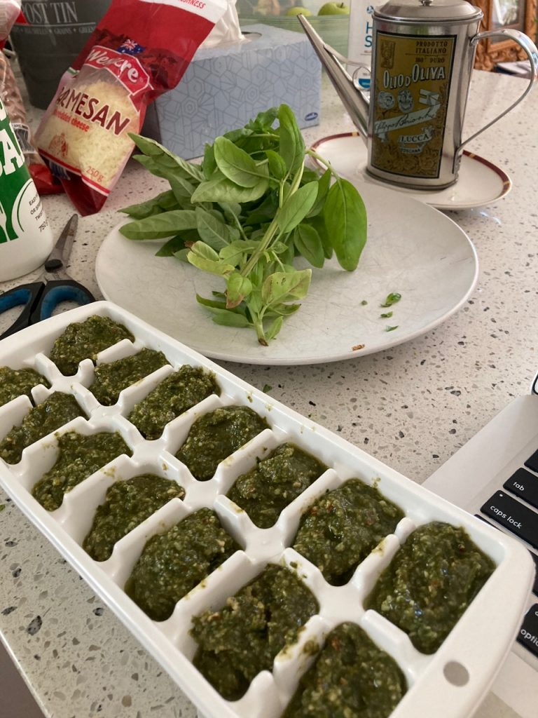 Home-made pesto in iceblocks ready to be frozen.