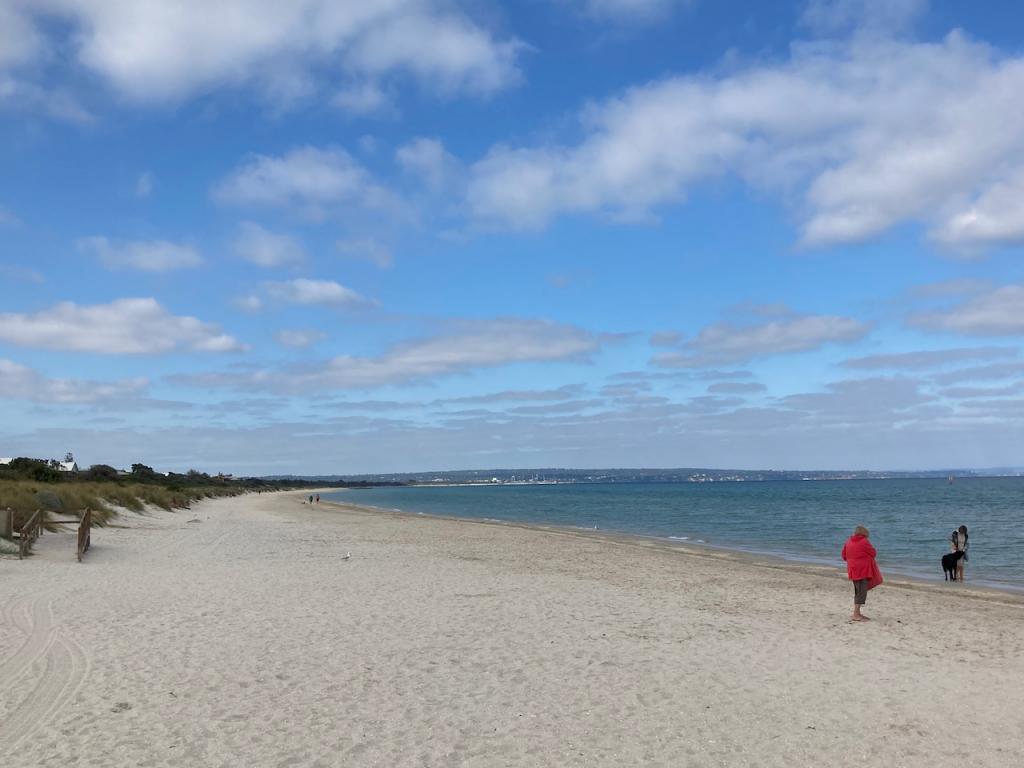 Today's beach walk.