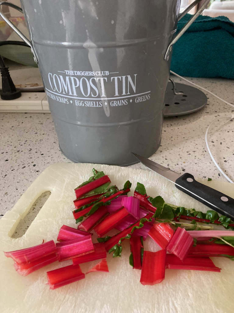 Chopped up red stalks in front of a grey compost tin.